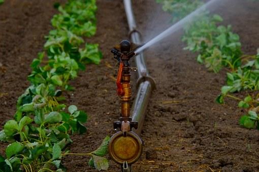 namakalni sistemi vrtne površine